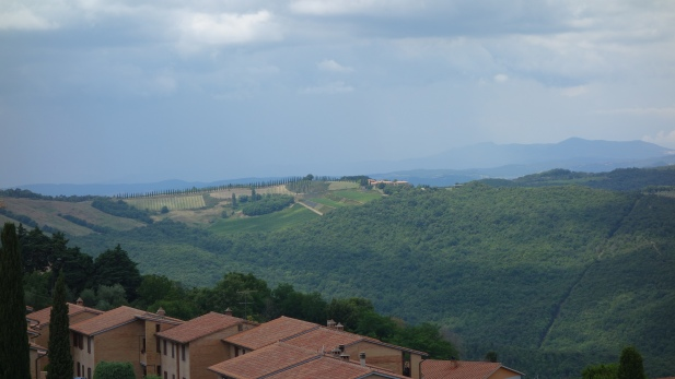 Montalcinon rinteitä