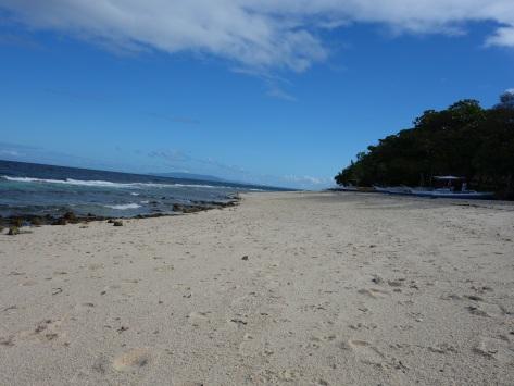 momo beach 2